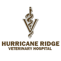 Hurricane Ridge Veterinary Hospital